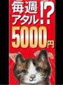 【スタッフ】千光寺マリ